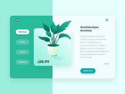 Green plant trading website illustration design interface ui
