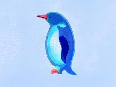 Penguin digital painting digital illustration ice snow illustration antarctica bird penguin