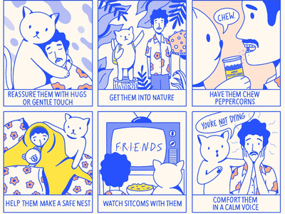 Tips for When Your Friend Gets Too High lettering hand lettering typography type comix comic cute silly drugs kitty cat procreate copywriting layout design illustrator illustration