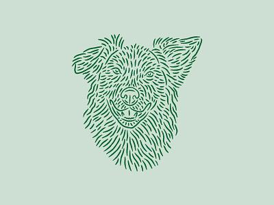 Baxter baxter pet animal puppy pup lines linework illustration dog
