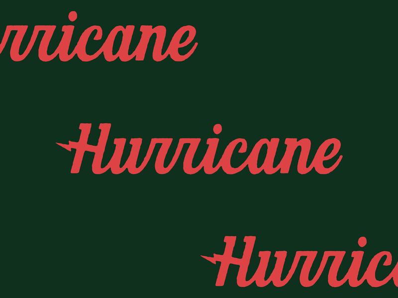 Hurricane logotype script typography lettering type