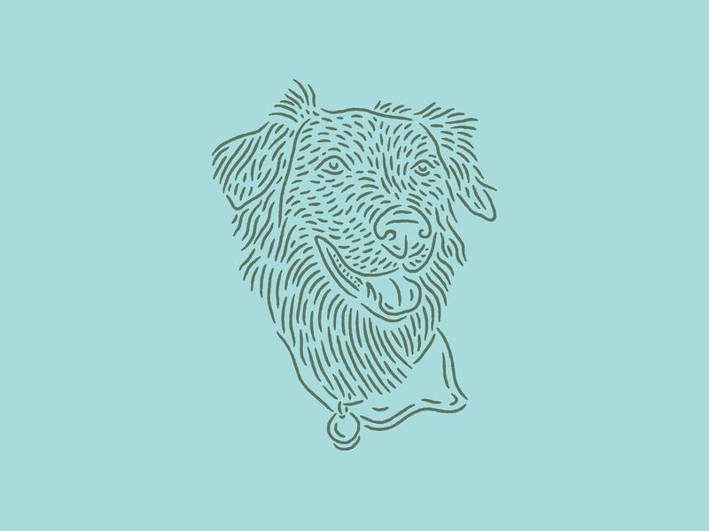 Baxter pet pup drawing illustration dog