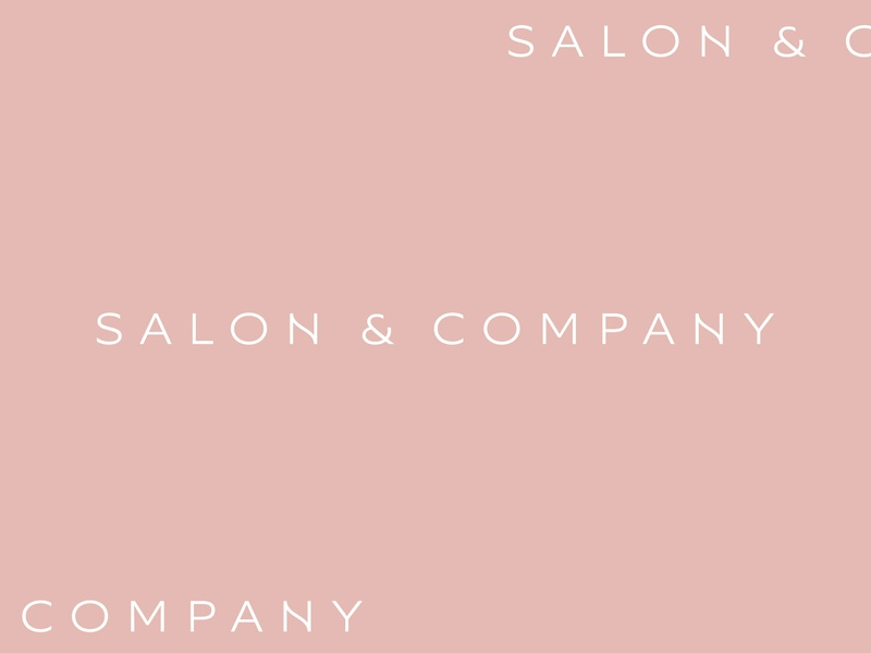 Salon & Company logotype logo lettering typography type