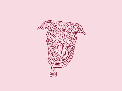Charlotte procreate drawing illustration dog