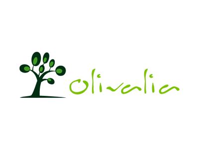 Olive Oil Company - Naming + Branding branding naming brand identity logo design frontend design website design startup startup logo startup branding logo