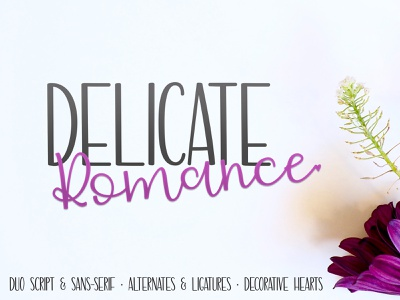 Delicate Romance typedesign type design typeface font fonts font design