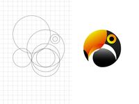 shape study and grid