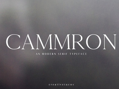 Cammron Serif Font Family illustration instagram clean logo art photo font creative design modern