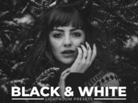 100 Black White Free Lightroom Presets
