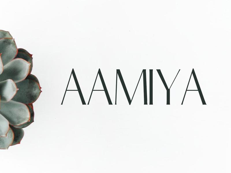 Free Aamiya Serif Typeface european english french expressive expert opentype luxury fancy sharp expression