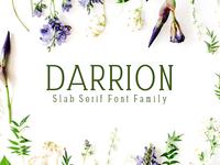 Darrion Slab Serif 5 Font Family
