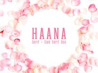 Haana Slab Serif Duo Font
