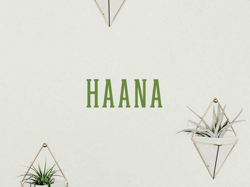 Free Haana Slab Serif Font text font simple serif slab display fonts bold typography
