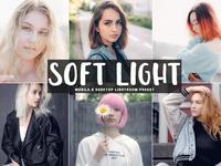 Free Soft Light Mobile Desktop Lightroom Preset