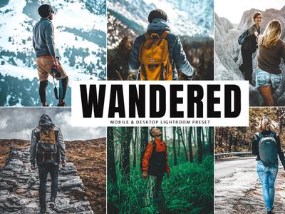 Free Wandered Mobile & Desktop Lightroom Preset