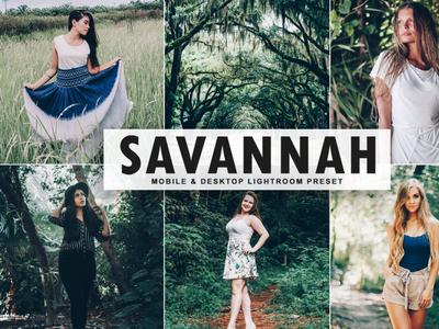 Free Savannah Mobile & Desktop Lightroom Preset