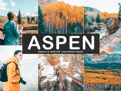 Free Aspen Mobile & Desktop Lightroom Preset