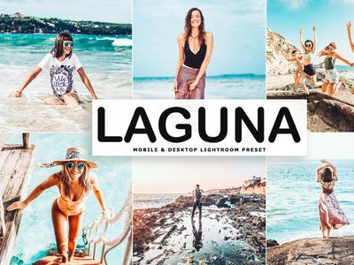 Free Laguna Mobile & Desktop Lightroom Preset