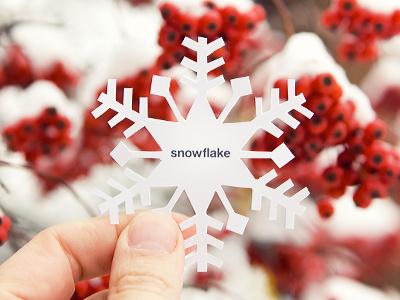 Glass Snowflake xacto photograph snowflake happyhour