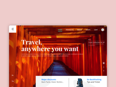 Travel Ui