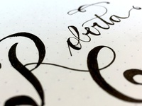 Playing with Calligraphy