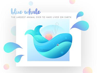 Blue Whale drops sun graphic design colourful best illustrations sunset ocean fish mammal illustration gradient blue whale