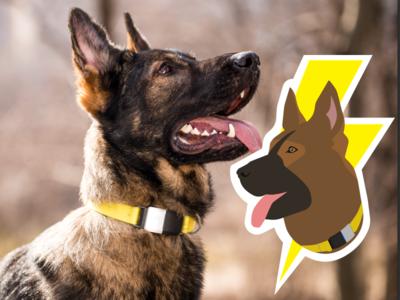 Thor illustration graphic sticker dogs dog fi illustration