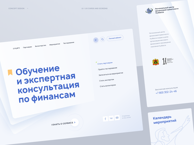 Financial Literacy Service finance web ux ui promo blue logo figma digital concept clean