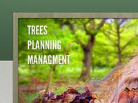 Trees, Planning, Management