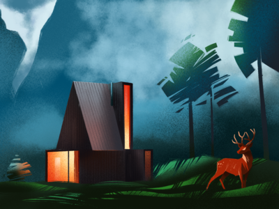 Forest Mystery Illustration