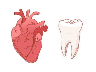 Bodyparts illustration tooth body heart bodyparts
