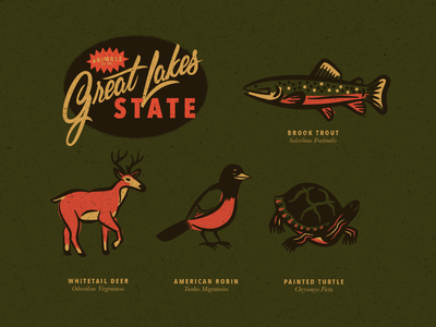 Michigan Animals script vintage lettering turtle painted robin deer whitetail trout brook lakes great animals michigan