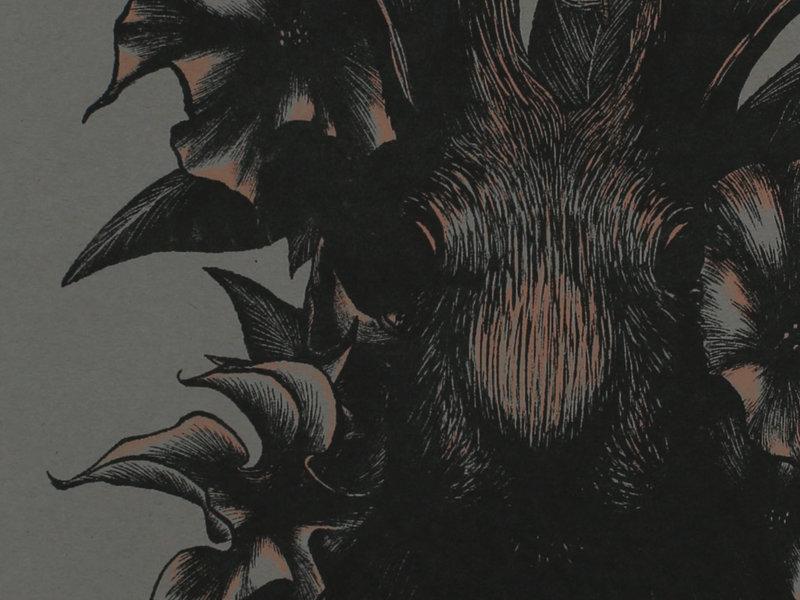 Datura stramonium occult entheogen hallucinogen poison dark flying ointment flight witchcraft ritual magic