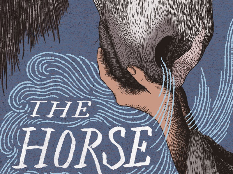 The Horse and His Boy narnia book cover illustration
