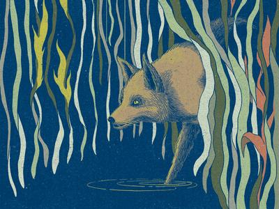 3/3 Fox Bears Witness