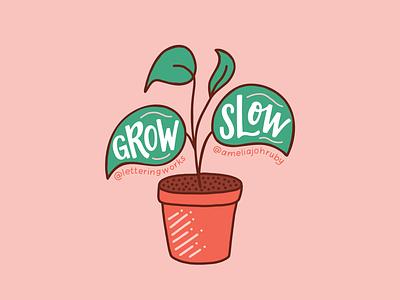 Grow Slow Plant lettering works chicago designer artist collaboration custom lettering plant illustration grow slow