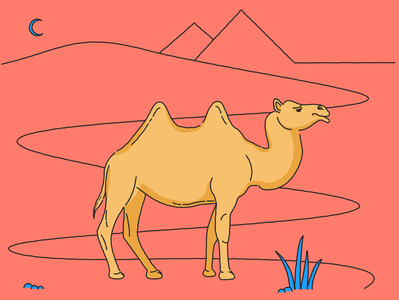 Camel moon lineart line illustration animal pyramids desert camel design art vector illustration