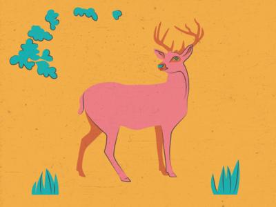 Deer texture spring family buck fawn deer line illustration illustrator flat design art vector illustration