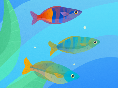Rainbow Fish pisces fishtank underwater aquarium fish texture water illustrator flat art vector illustration