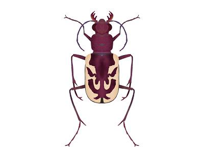 Cicindela lengi | Blowout Tiger Beetle beetle ipad pro insect bug illustration digital art