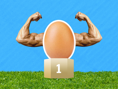 World Record Egg joke funny fun flat after effects 2d character animation egg aftereffects hand loop 2d animation character illustration behind the scenes gif animation