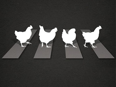 Comedy Poster Concept graphics beatles abbey road road comedy chicken illustrator illustration poster
