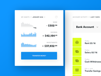 Bank Account Statistics Widget
