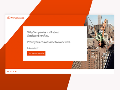 WhyCompanies Temporary Landing Page browser mobile responsive fluid landingpage landing