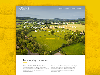 AMS website typography website webdesign ux ui layout icons gallery flat clean