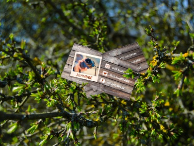 FREE Mock-up - Tree Business Card free freebie camera adventure trip travel kit branding outdoor nature mockup