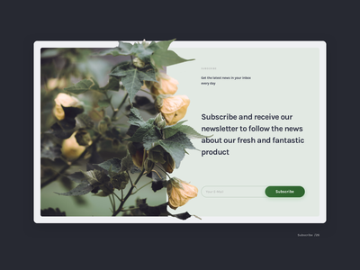 Subscribe photo layout ui web subscribe 026 daily ui