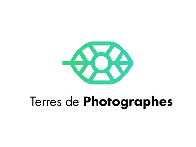 Logo Terres de Photographes gradient green leaf photographer logo photographer photo logotype logo futura typo