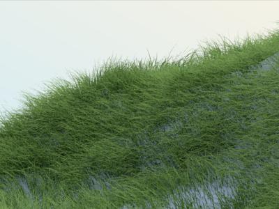 C4D hair-Grass landscape