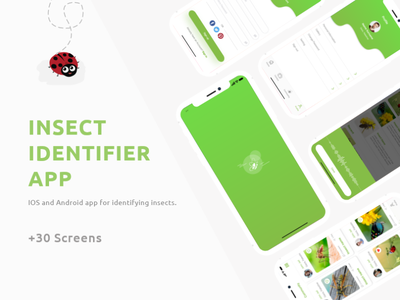 Insect Identifier App || UX/UI ux design iphone icon design illustration 2019 trend green minimal ios dribble shot new insect android ios app trend ui ux application app design app